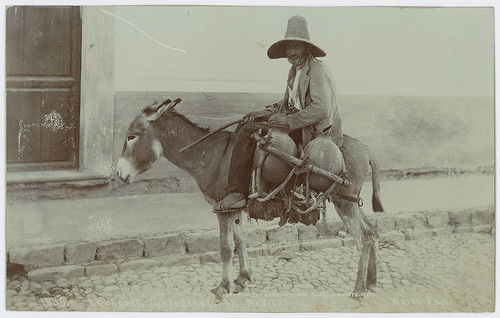 Aguadore (Water Carrier). Mexico. [No. 1635], From FlickrPhotos