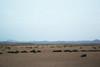 Route de Sable (vincentjoly) Tags: maroc morocco merzouga desert africa afrique route ciel paysage aventure sky sand sable vincent joly