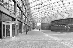Centro direzionale (drugodragodiego) Tags: lodi lombardia italy architecture buildings glass steel blackandwhite blackwhite bw biancoenero directionalcenter pentax pentaxk1 k1 pentaxdfa2470mmf28 hdpentaxdfa2470mmf28edsdmwr pentaxiani
