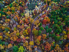Candy Trees (Daniel000000) Tags: fall colors leaves trees nature tree wisconsin midwest usa green yellow orange autumn landscape photography d750 dji drone uav spark road roads country