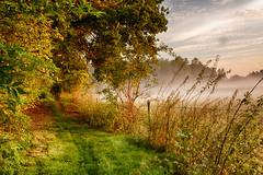 IMG_0588_0589 (JJ_1968) Tags: limburg summer sunshine autumn foggy