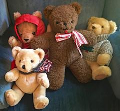 Sweet Quartet (BKHagar *Kim*) Tags: bkhagar teddy teddies teddybear teddybears many estatesale sitting chair