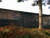 SOUTH SIDE LOCOS vs. FLORENCIA 13 (northwestgangs) Tags: everett snohomishcounty gangs ganggraffiti surenos crips