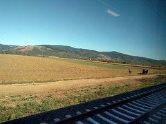 Romania, good-bye from the train (ashabot) Tags: romania train trains travel traveldiaries traveler europe centraleurope balkans
