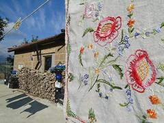 second skin (nightcloud1) Tags: autumn cooler firewood embroidery textiles naturalmaterials studio nightcloud october