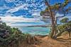 Mendocino (Bob.Z) Tags: california ca usa mendocino northerncalifornia pacific shoreline ocean