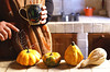 Autumn. (sullen_snowflakes) Tags: zucche pumpkins mani hans tazza mug volpi foxes canon