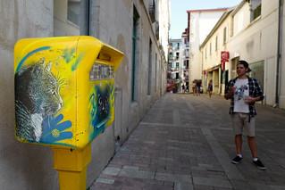 C215 Street Art à Bayonne