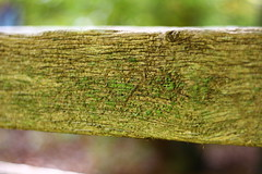 Benchmark. (Nathalie_Désirée) Tags: bench wood vintage heart drawing scratch lovely harmony love symbol sunlight forest story embassadoroflove canoneos600d canon50mm f18 closeup macro carve creativity bokeh message finding found sign