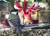 Mésange charbonnière (Kaya.05) Tags: oiseau closeup noirjaune extérieur nature mésange lumière couleurs automne 2017 canon5dsr hautesalpes france bokehlicious beyondbokeh bokehoftheday bokehwhores bokeh ngc macro