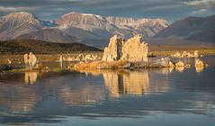 Mono Lake Morning (alicecahill) Tags: sierra october sunrise ©alicecahill sierranevada michaelfryeworkshop monocounty lake fall light california easternsierra tufa usa autumn southtufa mountains monolake morning