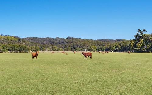 142 Bartletts La, Meerschaum Vale NSW 2477