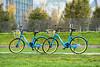 2017 Blaue Fahrräder mit gelben Reifen (mercatormovens) Tags: frankfurt frankfurtammain natur fahrrad ezb ruhrorterwerft fahrradkorb byke