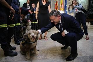 La Generalitat Valenciana y el Ayuntamiento de València han firmado un convenio de colaboración para extender el trabajo de la Unidad Canina de Rescate del consistorio a toda la Comunitat Valenciana. 22/09/2017