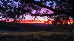 Ariege arbre (zqk09) Tags: france ariege landscape paysage nature tree foret forest ombre sun soleil sunset coucher sunlight color full canon 1300d