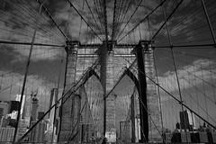 Brooklyn Bridge (^Diana^) Tags: 1658a brooklynbridge newyork usa bridge tourist manhattan water river architecture blackandwhite monochrome