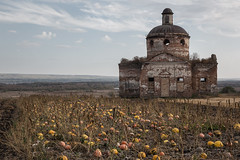 Old Church and Pumpkins. (Oleg.A) Tags: ancient autumn penzaregion destroyed church nature pumpkin halloween orange orthodox architecture park antique yellow ruined shadow saintnicolaschurch landscape russia old brick outdoor rural evening villiage wall countryside blue abandoned interior colorful materials grass leaves cathedral building skyscape dome art bell staryakutlya