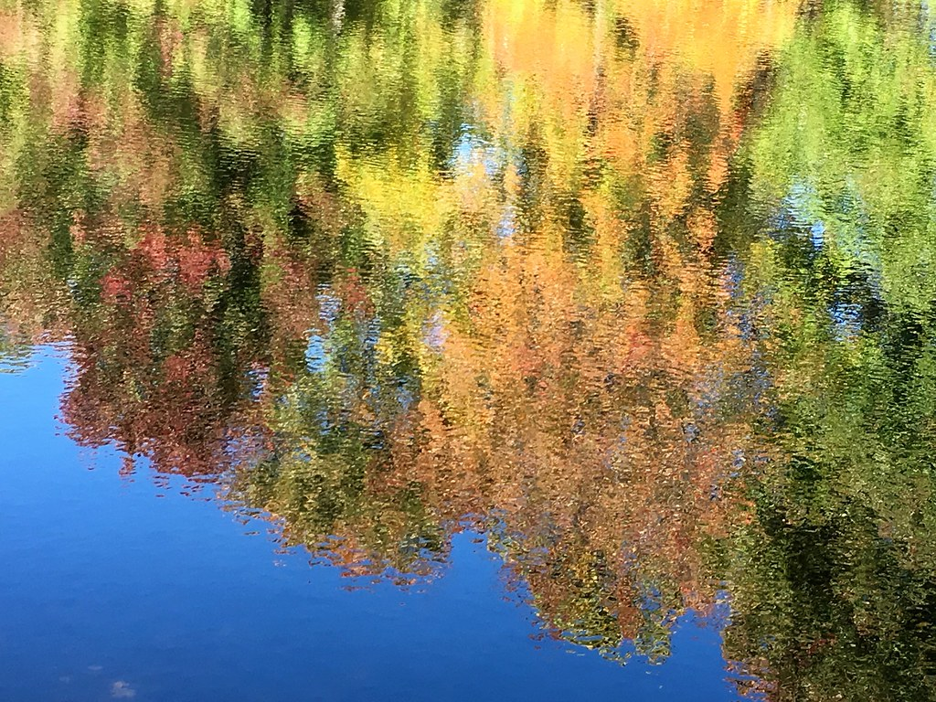 what is photo stream on iphone the world s best photos of ponds and reflections flickr 4503