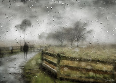 this is life . . . (YvonneRaulston) Tags: surreal greenscene rain raindrops emotive atmospheric moody soft shower photoshopartistry person people texture sony fog mist moss vale australia wet cold fence trees tree creativeartphotography art sundaylights