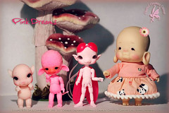 In my field of paper flowers and candy clouds of lullaby (chartar_69) Tags: charlescreaturecabinet charlesstephan balljointeddolls ccc glowinthedarkresin poink aggiepebbles mimi tahutofuko buddhagirl
