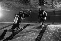 Pic of divers in the swimming pool while they were reviewing their open water skills Water Real People Swimming Pool Men Full Length Sport Lifestyles Scuba Diving Day Outdoors Competitive Sport Adult People Adults Only Khubar Alkhobar Saudi Arabia Riyadh (abdullah-alrassi) Tags: water realpeople swimmingpool men fulllength sport lifestyles scubadiving day outdoors competitivesport adult people adultsonly khubar alkhobar saudiarabia riyadh jeddah dammam