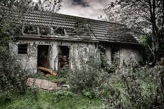 Verfall ... HDR (gabrieleskwar) Tags: lost place outdoor ruhrgebiet ruine grün gras haus hdr trist bäume blätter schatten