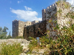 Lars_20171012-07_LB-Byblos (lars-1) Tags: lebanon byblos lars lars47