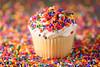 Sprinkles! (runrgrl661) Tags: macro hbw detail sprinkles cupcake foodphotography bokeh colorful colors sb700speedlight offcameraflash nikon
