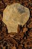 I Can Read It In The Stones (gripspix (OFF)) Tags: 20171012 constructionarea bauland rock stone stein skulllike schädselartig omen