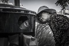 DSC00193b (gdo.bullseye) Tags: searching garbage woman destitute survival inventive urban problem creativesolution
