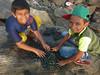 kids processing green mussels (steve happ) Tags: calicut india kerala kozhikode