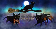 JIAN @ The Epiphany Sneak Peak ([JIAN]) Tags: secondlife animals cats black costume pets gacha wip sneakpeak jian