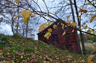 autumn and barn