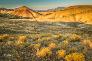Morning Light on Painted Hills