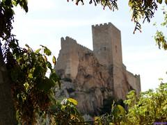 Almansa (santiagolopezpastor) Tags: castillo castle chateaux medieval middleages espagne spain españa castilla castillalamancha albacete provinciadealbacete