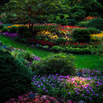 The beauty of Butchart Gardens thumbnail
