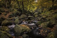 Autumn at Padley Gorge (unciepaul) Tags: padley gorge autumn october colours water rocks leaves trees peak district walk photography tripod longexposure lightroom nikond800 polariser