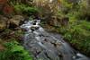 Eight Seconds (Bert CR) Tags: conservationarea elora eloragorge fall fallcolors eightseconds stream silkywater polarizer landscape grandriver green richcolors outdoors