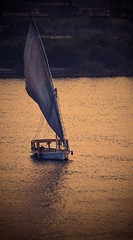 Strolling ... (Hazem Hafez) Tags: boat nile sun sunset water river sailboat sail slow