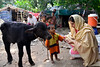 PHOTO OF THE WEEK: 23 October 2017 (UNICEF HQ) Tags: pakistan polio unicef child rights kids united nations immunization health worker