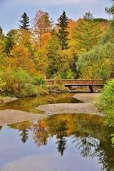Fall, Edwards Gardens, Toronto, ON (Snuffy) Tags: fall autumn seasons edwardsgardens torontobotanicalgarden donmills northyork toronto ontario canada