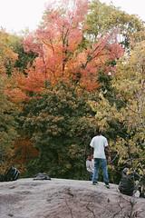 Central Park, NYC (instagram.com/lanolan) Tags: autumn centralpark color day fall fuji fujifilm fujifilmxpro2 manhattan newyork newyorkcity newyorknewyork ny nyc outdoors outside park people streetphotography thebigapple trees xpro2