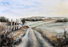 Paysage entre Ardenne et Famenne (Demars Philippe) Tags: paysage chemin perspective champs prés clôture demars watercolor aquarelle ciel