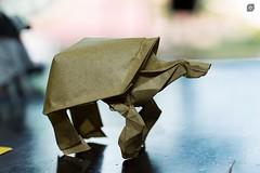 Tortoise - Designed by Nguyễn Hùng Cường (Nguyễn Tuấn Tài) Tags: