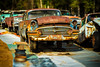 I walk the line (ISP Bruno Laplante) Tags: buick scrapyard rust rusted cars car old classic chrome orange vinatge decay nikkor tilt shift