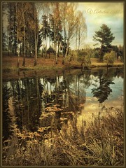 Autumn landscape. (odinvadim) Tags: mytravelgram textured textures iphone editmaster travel iphoneography evening iphoneonly painterly artist snapseed landscape specialist iphoneart painterlymobileart edit