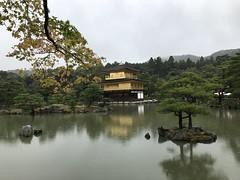 Kyoto Day 5