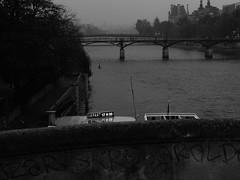 Pont Neuf (otonielcostaneto) Tags: black white lx5 lumix paris pont neuf rain seine