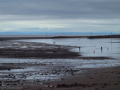 Late-afternoon on the beach (ExeDave) Tags: pa236692 minehead beach west somerset sw england gb uk coast bay bristolchannel south s wales october 2017 landscape waterscape seascape tidal midtide breakwater sand rocks cymru