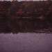 Ice House Pond. Woods Hole glacial end Moraine. October 1988